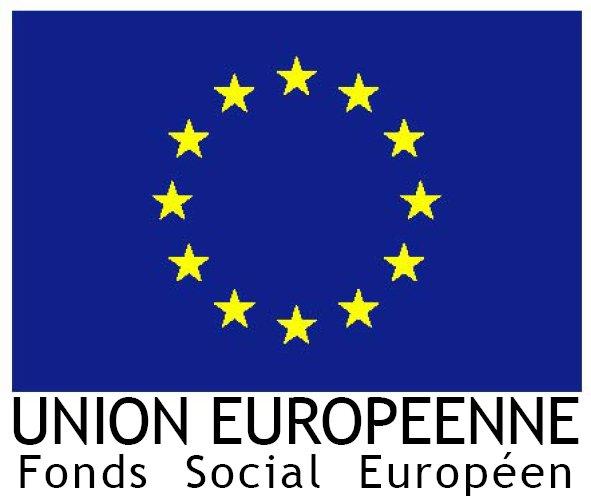 drapeaueurope_mentionfse.jpg